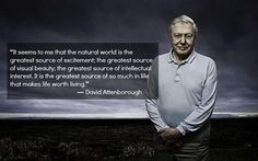 Sir David Attenborough sums up how I feel about being a speck on this blue jewel in space Ap Environmental Science, Cheesy Quotes, Pantheism, Science Guy, David Attenborough, We Are All One, Happiness Project, Carl Sagan, Inspiring Things
