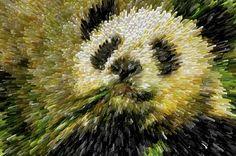 I uploaded new artwork to fineartamerica.com! - 'Giant Panda Bear Eating Bamboo' - http://fineartamerica.com/featured/giant-panda-bear-eating-bamboo-lanjee-chee.html via @fineartamerica