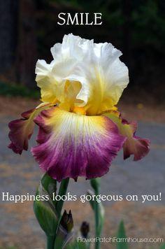 Smile, Happiness Looks Gorgeous on You, FlowerPatchFarmhouse.com
