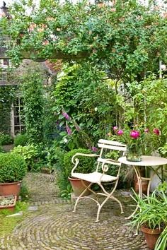 Rustic courtyard garden like ours........ Add interest with living boarders that define the space and seperate it into zones