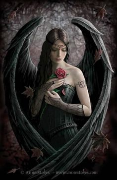 Anne Stokes Angel Rose Poster Art Print: Beautiful fine art poster that is sure to please any heavy metal fan. This stunning poster of The Angel Rose by artist, Anne Stokes, is sure be a hit with any fan of the or gothic culture. Dark Angels, Angels And Demons, Fallen Angels, Angels And Fairies, Dark Fairies, Anne Stokes, Fantasy World, Dark Fantasy, Gothic Fantasy Art