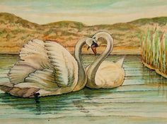Vintage Watercolor Painting of Two Swans by QueensParkVintage, $45.00