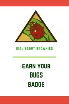 Ways to meet the requirements to earn the Brownie Bugs badge