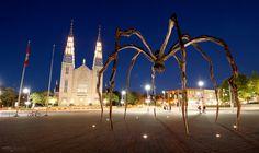 Notre Dame Cathedral Basilica - Ottawa (Ontario, Canada)