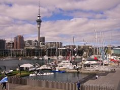Living the Dream at the Auckland on the Water Boat Show