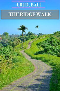 Bali Travels | Ubud,