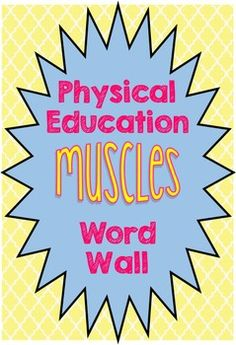 Physical Education Muscles words to download, print, and hang on the wall for vocabulary in the gym. From the Gym PE Creations