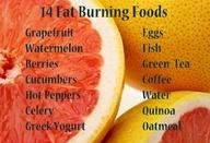fat burning foods