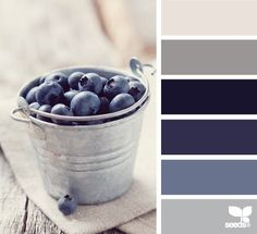 { blueberry tones }