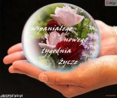 Snow Globes, Good Morning, Christmas Bulbs, Happy Birthday, Holiday Decor, Beautiful, Home Decor, Nova, Motto