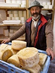 SPAIN, Cantabria - Luis Alberto Alles, an artisan producer of the blue cheese Picón Bejes-Tresviso. |