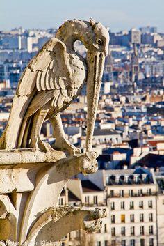 Ile de la Cité, Notre Dame Cathedral gargoyle, Paris.