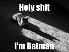 Batman Or Catwoman?
