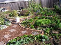 Edible Landscaping: Permaculture Garden Design | jardin potager | bauerngarten | köksträdgård
