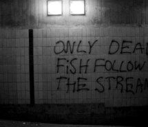 Inspiring picture black and white, fish, typography.