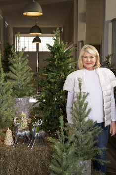Its Christmas in July! Today from 1pm-5pm EST Martha will be on QVC debuting her holiday collection. Tune-in to @qvc for all things holiday! Christmas In July, Christmas Home, Christmas Crafts, Christmas Inspiration, Martha Stewart, Qvc, Table Decorations, Neutral Tones, Holiday Decor