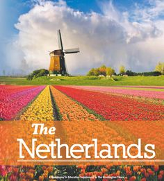 All about The Netherlands
