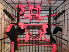 Sugar Gliders cages are Awesome! Sugar Glider Cage, Sugar Glider Toys, Sugar Gliders, Ferret Cage, Rat Cage, Pet Rats, Pets, Rat Toys, Sugar Bears