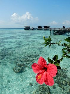 Blue waters of Malaysia