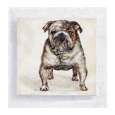 Penny the Bulldog Portrait on 5x5 Canvas Print Art  Block by PeyLu,