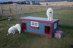 Beau & Anichka - Montana: several years of being tried and tested, this dog house has been proven to be the most comfortable and the safest home you can build for your beloved dogs.