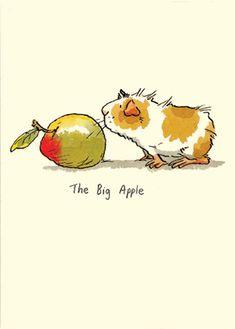 M7 The Big Apple - A Two Bad Mice Card by Anita Jeram