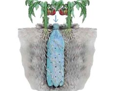 Smart irrigation method