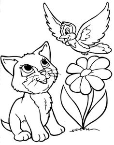 A Cat And Bird Coloring For Kids