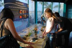The touch tank at Explore Ocean. The Newport Nautical Museum.