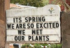 Uh oh... looks like someone had a potting accident. (find more funny photos at funnysigns.net)