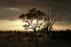 Sunrise Flinders Ranges, South Australia