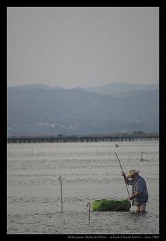 Eels Fisherman - Delta del Ebro, Tarragona
