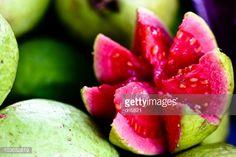 Stock Photo : Goiaba / Red Guava