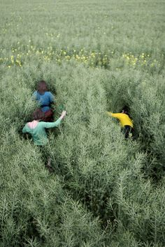 consequential- following as a result or effect. The girls going into the tall grass in this photograph could have a consequential effect.