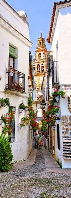 Cordoba, Spain!  I have been here!!  Brings sweet memories back!  Aline ♥