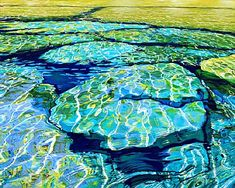 Shoreline Isthmus Bay-Bruce Peninsula, OntariobyMargaretheVanderpas