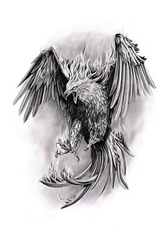 a phenix tattoo design. Tattoo Dragon And Phoenix, Phoenix Bird Tattoos, Phoenix Tattoo Design, Phoenix Design, Trendy Tattoos, Tattoos For Guys, Cool Tattoos, Tatoos, Wing Tattoos