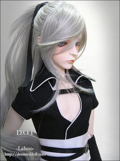 http://www.dreamofdoll.com/eng/product/product_view.asp?idx=8D00000378