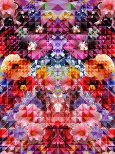 Crystal Floral Art Print by pattern people Textiles, Textile Prints, Floral Prints, Art Prints, Textile Design, Floral Design, Fabric Design, Textures Patterns, Print Patterns