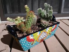 Cacti and succulents in a hand-painted Talavera pot