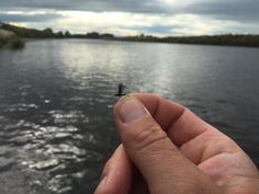 Tying for October - Contrast - Fly Fishing with Chris Dore