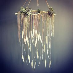 Tillandsia & Spanish moss grace a delicate hanging of feathers  #plants #houseplant #myt