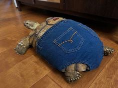"""29 Chonky Bois That Definitely Qualify As Absolute Units - Funny memes that """"GET IT"""" and want you to too. Get the latest funniest memes and keep up what is going on in the meme-o-sphere. Cute Turtles, Baby Turtles, Turtle Baby, Happy Turtle, Animals And Pets, Baby Animals, Post Animal, Tortoises, Cute Funny Animals"""