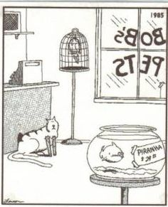 Who remembers these comics? Millions of people all over the world were fans of The Far Side! The Far Side was a single-panel comic created by Gary Larson