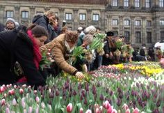 On Saturday, January 19th, tulip growers and promoters will fill Amsterdam's Dam Square with thousands of tulips, free for the picking, to inaugurateTulpendag(Tulip Day), the official start of the tulip season in Holland.