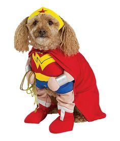 Google Image Result for http://www.dogcostume.info/wp-content/uploads/2011/09/RU50513_wonder_woman_dog.jpg