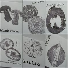 The veggie book