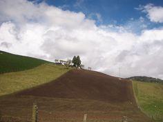 Alistamiento de  tierra para cultivos