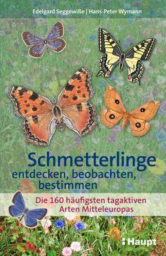 schaeresteipapier: Buch - Schmetterlinge entdecken, beobachten, bestimmen