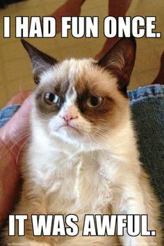 Kot Zrzęda - plakat